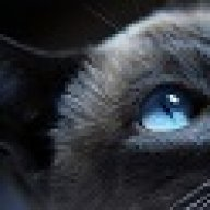 Painting GPU shroud | Tom's Hardware Forum